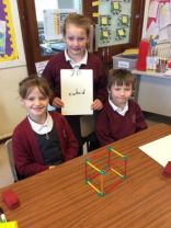 3D Shape in P5B