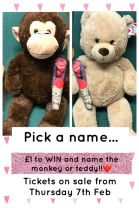 Win Teddy or Monkey!!